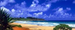 4 Ilhas Havaianas